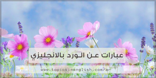 عبارات عن الورد بالانجليزي مواضيع باللغة الإنجليزية عبا
