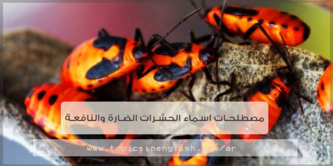 مصطلحات اسماء الحشرات الضارة والنافعة