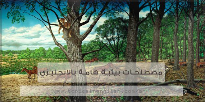 مصطلحات بيئية هامة بالانجليزي