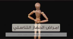 امراض الجهاز التناسلي عربي انجليزي