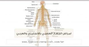 امراض الجهاز العصبي بالانجليزي والعربي