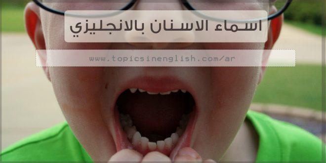 اسماء الاسنان بالانجليزي مواضيع باللغة الانجليزية