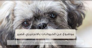 موضوع عن الحيوانات بالانجليزي قصير