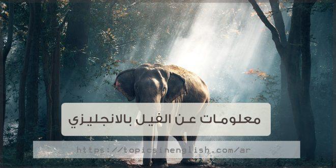 معلومات عن الفيل بالانجليزي مواضيع باللغة الانجليزية
