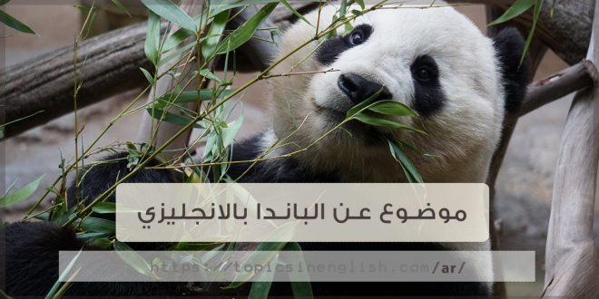 موضوع عن الباندا بالانجليزي