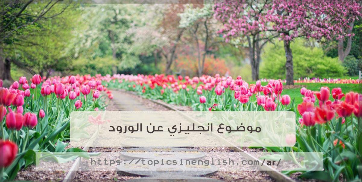 عبارا عن الورد بالانجليزي مواضيع باللغة الانجليزية Inb07dd Infosassur Com