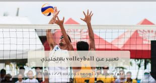 تعبير عن volleyball بالانجليزي