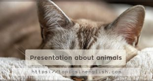 Presentation about animals