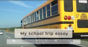 My school trip essay