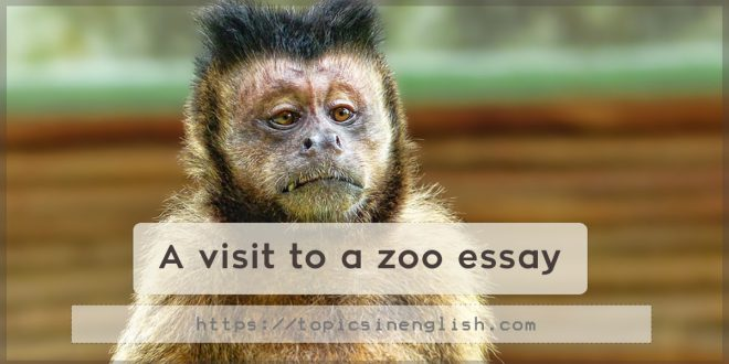 A visit to a zoo essay