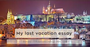 My last vacation essay