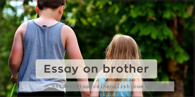Essay on brother