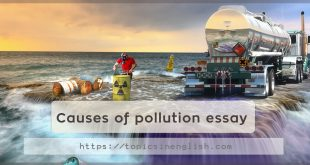 Causes of pollution essay