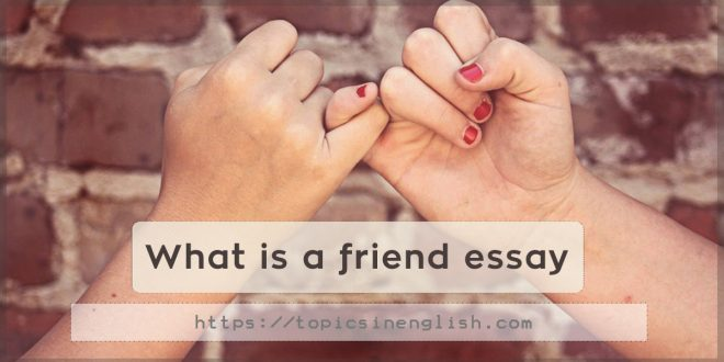 What is a friend essay