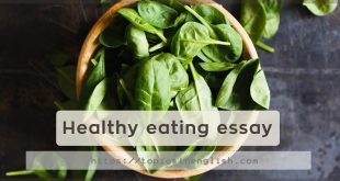 Healthy eating essay