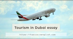 Tourism in Dubai essay