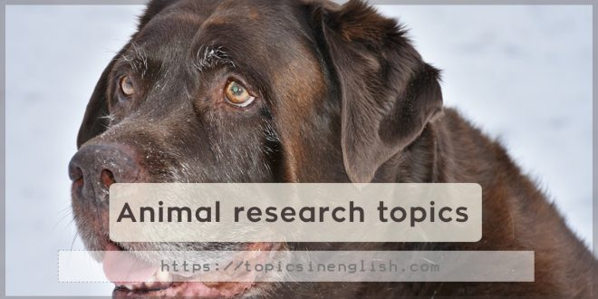 Animal research topics