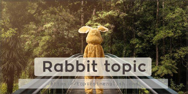 Rabbit topic