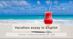 Vacation essay in English