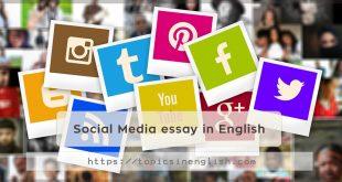 Social Media essay in English