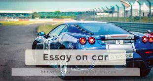 Essay on car