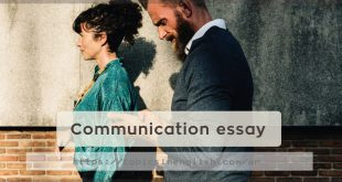 Communication essay